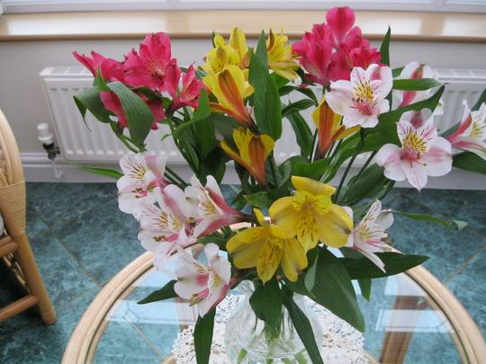Vase of Alstroemerias