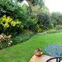 The side garden 08.10.14