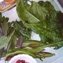 spinach, runner beans, herbs063.jpg