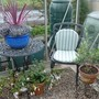 My little seating area in the greenhouse
