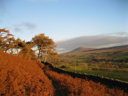 November colours in the Lake District