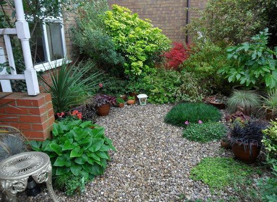 The front garden November 2014