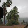 Rainy San Francisco eastbay day..