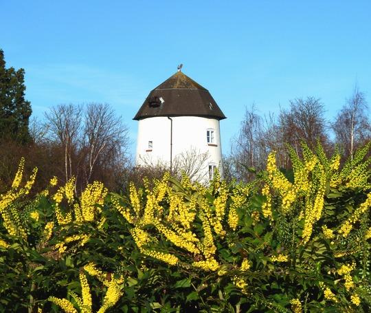 Old windmill ...