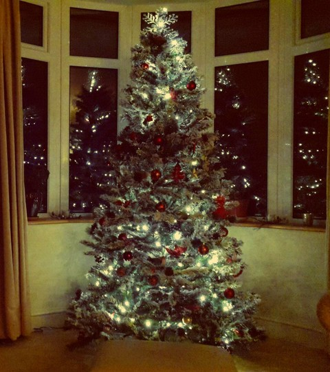Christmas tree with reflections....