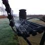 Early morning autumn cobwebs