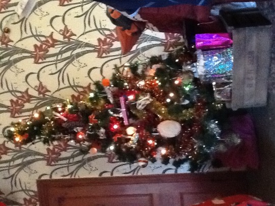 Our 26 year old Christmas tree