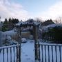 Back Garden Today
