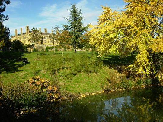 Batsford Arboretum 14th October 2012 038