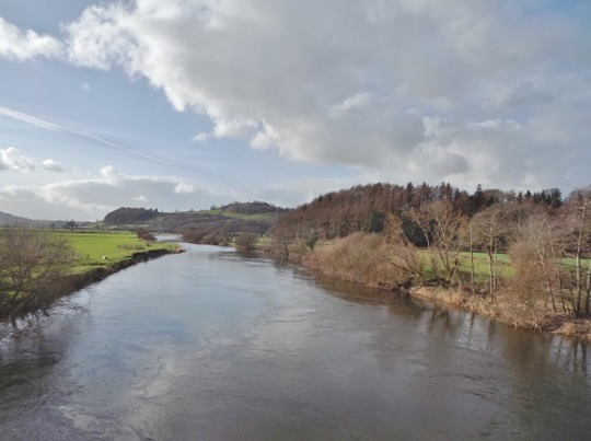 River Tywi from the Cilsan Bridge, this afternoon :o)