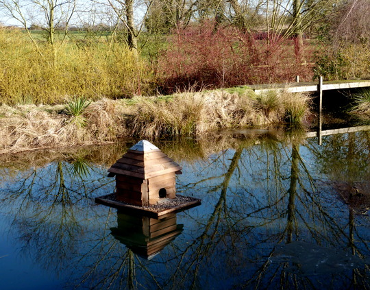 Floating Duck House