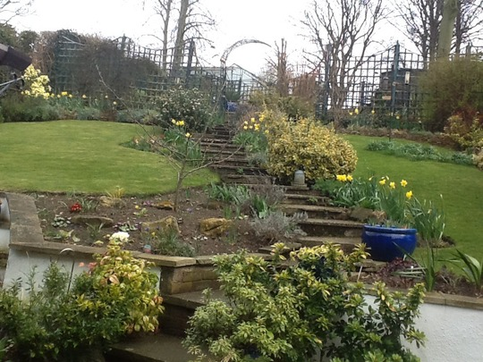 Lovely and bright now the Daffodils are coming out.