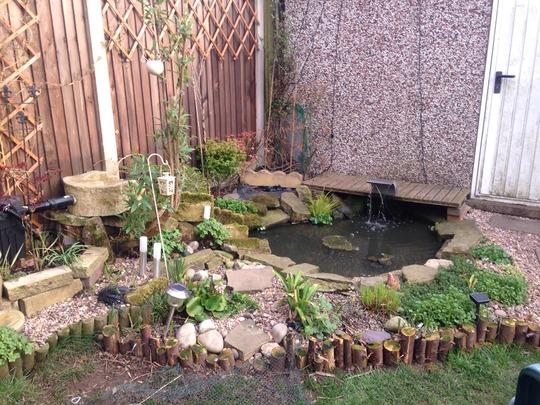 The pond area!