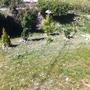 Flower/shrub bed