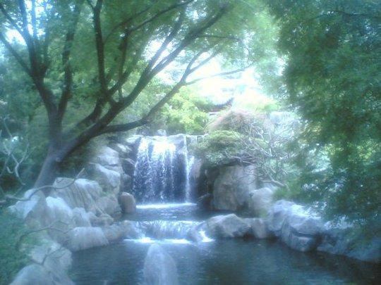 Chinese Friendship Garden Sydney