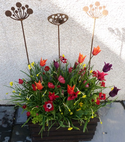 For Oliveoil...Tutti Frutti Planter with Seed-Head Ornaments