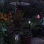 Garden lighting up.