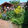 rh flower bed