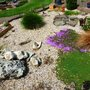 Part 1 of scree garden coming to life