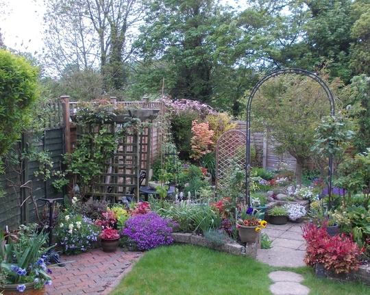 Garden 2015.