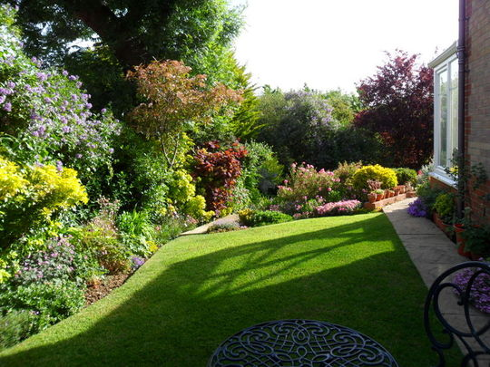 The side garden 15.06.15
