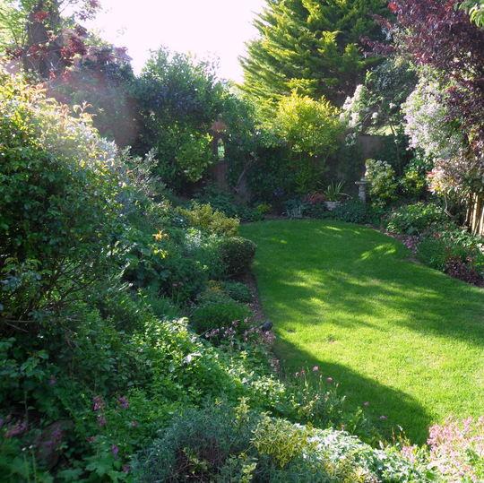 The bottom garden