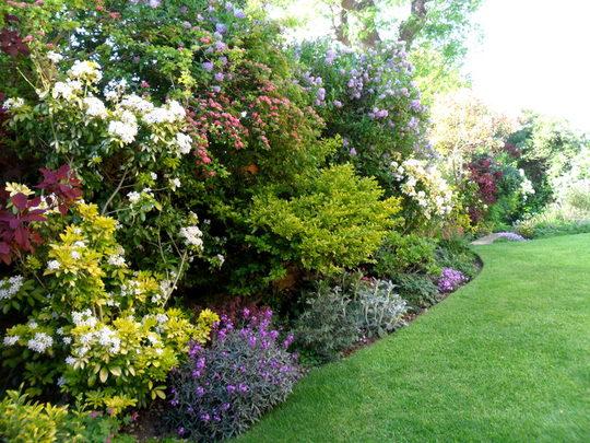 The side garden border