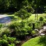 Front Garden Spring 2015 VT>