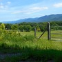 This is Vermont countryside.