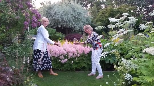 Pink Astilbe...we were admiring Jills beautiful planting.
