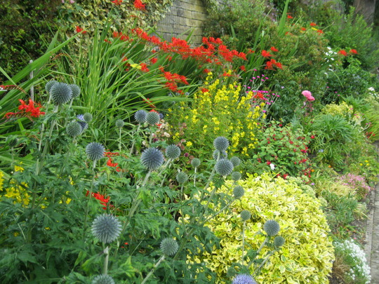 front border mingle..