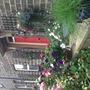 Our front garden and door.