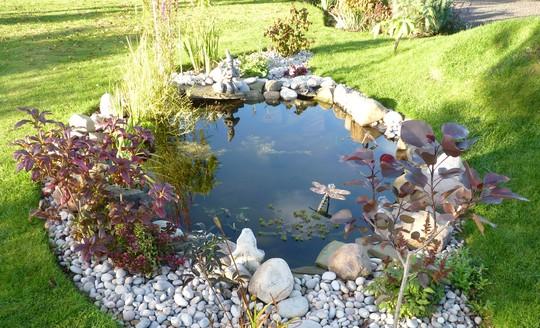 September Pond