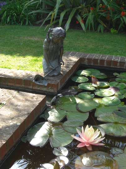 Water Lilly and statue Apple Court garden