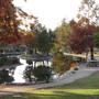 Palm park pond