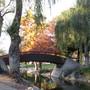 Asian bridge.