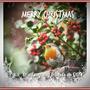 Christmas_robin_fotor