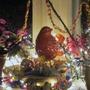 Merry Christmas to all Goys