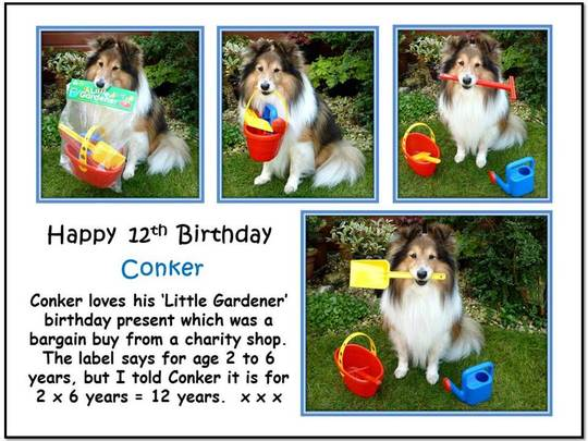 The Little Gardener set .... Conker's 12th birthday present ...