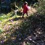 Exploring the wild patch!