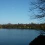 The lake at the park