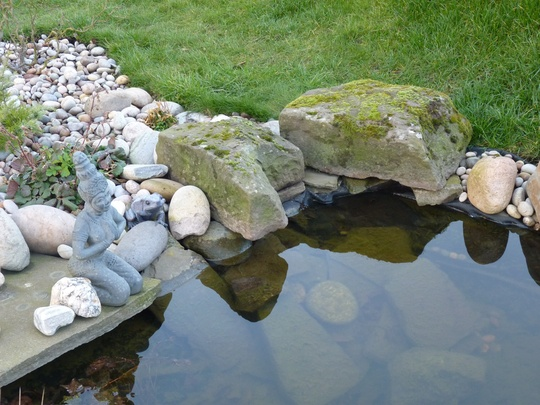 Two new mossy rocks at the pond side.