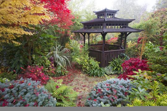 Autumn at Four Seasons