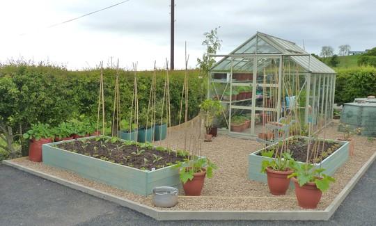 Veggie Garden...