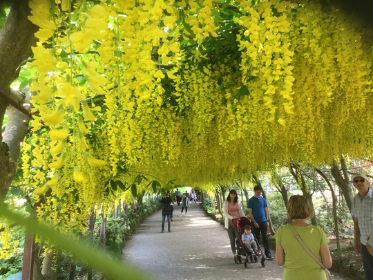 Bodnant Garden Wales