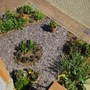 Aerial View Of The Recently Finished Front Garden