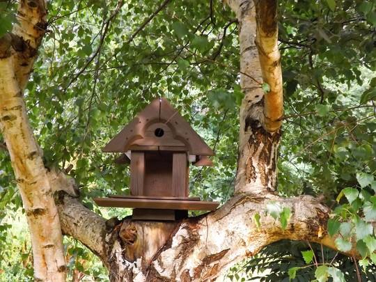 Bird house refurbishment.