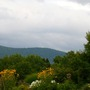Approaching Fall View VT.