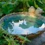 Bird Bath ornament