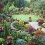 Upper garden 23 July 08